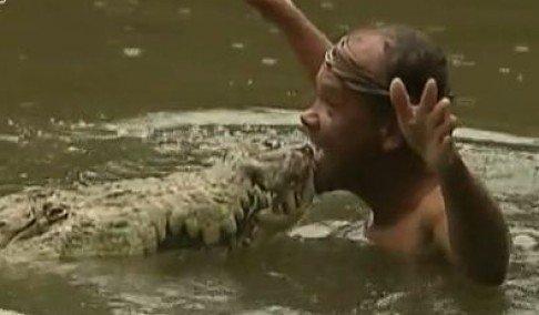 neobicna ljubav coveka i krokodila